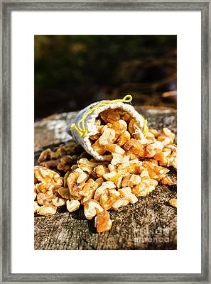 Overflowing Sack Of Fresh Walnuts Framed Print by Jorgo Photography - Wall Art Gallery