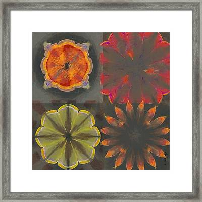 Overfrequent Bare Flower  Id 16165-012748-66990 Framed Print by S Lurk