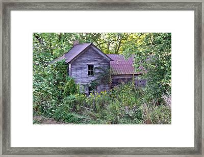 Overgrown Abandoned 1800 Farm House Framed Print by Douglas Barnett