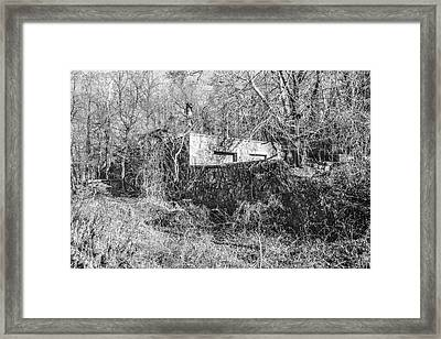 Overgrown Framed Print by Eliza McNally