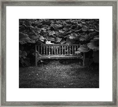 Overgrown Framed Print by Jason Moynihan