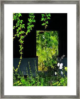 Overgrown Framed Print by Rick Mosher