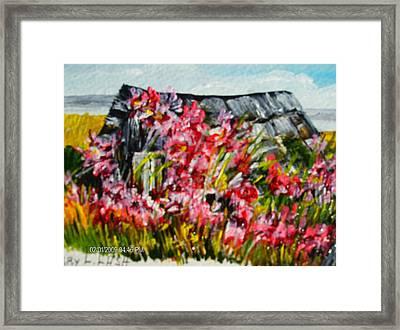 Overgrown Rosebushes Framed Print by Terry Lash