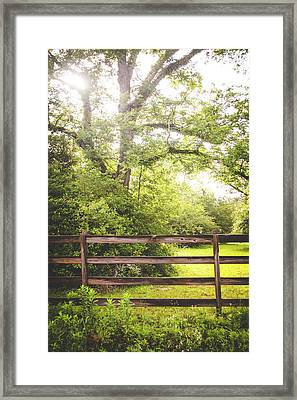 Framed Print featuring the photograph Overgrown by Shelby Young
