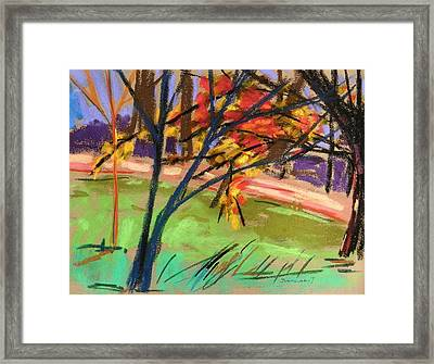 Overhangs The Path Framed Print by John  Williams