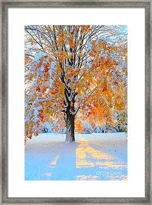 Overlap Framed Print by Jesse Ciazza