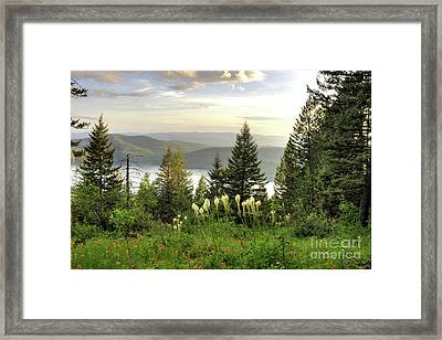 Overlook Framed Print by Dave Hampton Photography