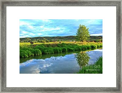 Overlooking Irrigation Canal Framed Print