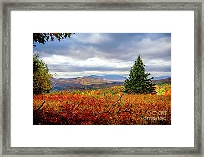 Overlooking The Foothills Framed Print