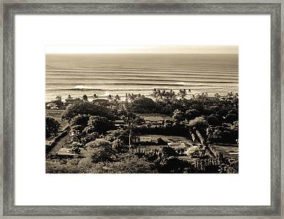 Sepia Lines Framed Print