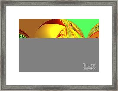 Ovs 47 Framed Print