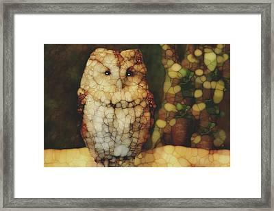 Owl 5 Framed Print by Jack Zulli