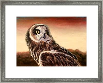 Owl At Sunset Framed Print