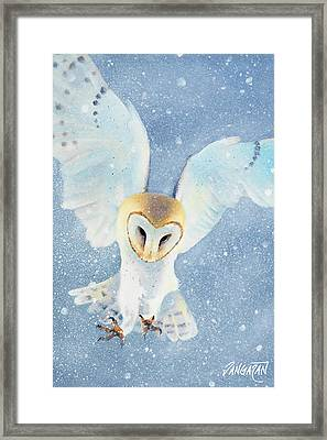 Owl Detail Framed Print by Tim Dangaran