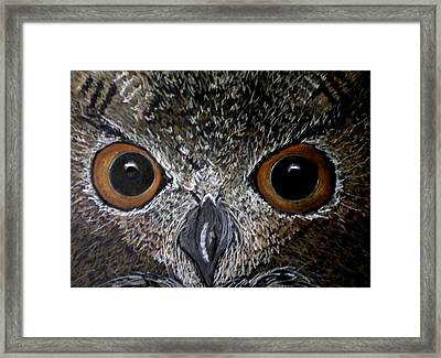 Owl Enlightened Framed Print by Michelle Audas