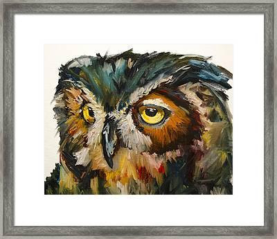 Owl Eye Framed Print