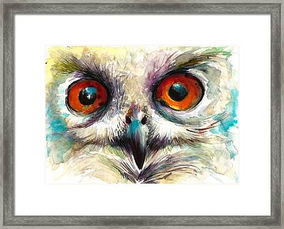 Owl Eyes - Detail Framed Print by Tiberiu Soos