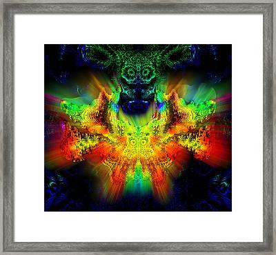 Owl Feng Shui Framed Print