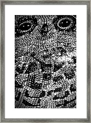 Owl Handbag Flag #2 Framed Print by Stuart Litoff