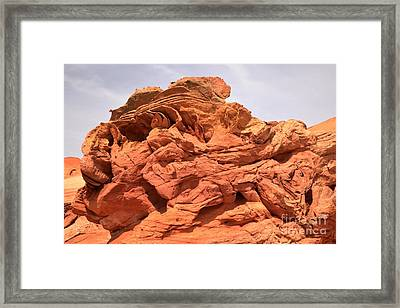 Owl In The Desert Framed Print