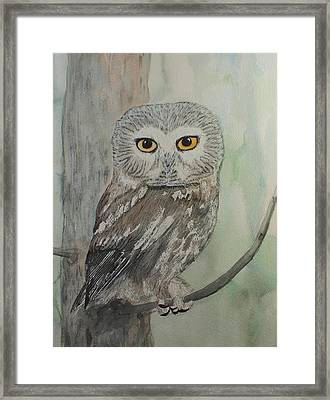 Framed Print featuring the painting Owl In Tree by Kim Fournier
