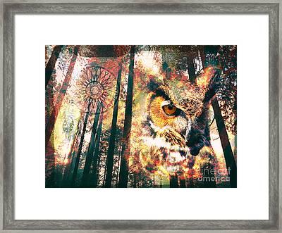 Owl Medicine 2015 Framed Print
