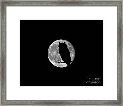 Owl Moon .png Framed Print by Al Powell Photography USA