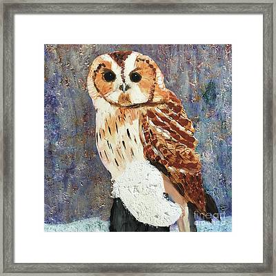 Owl On Snow Framed Print