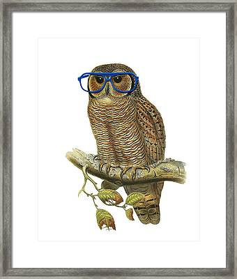 Owl Sitting On A Branch With Blue Glasses Framed Print