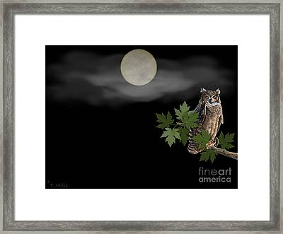 Framed Print featuring the digital art Owl by Terri Mills