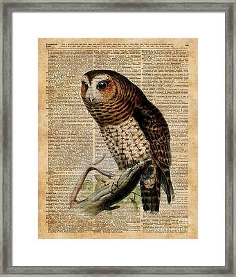 Owl Vintage Illustration Over Old Encyclopedia Page Framed Print by Jacob Kuch