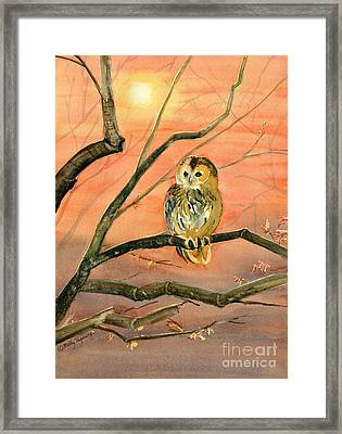 Owl Watercolor Art Framed Print by Melly Terpening
