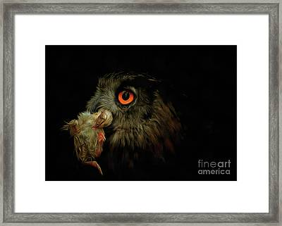 Owl With Prey Framed Print