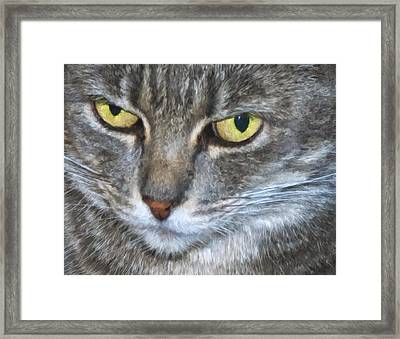 Owlowishes Framed Print