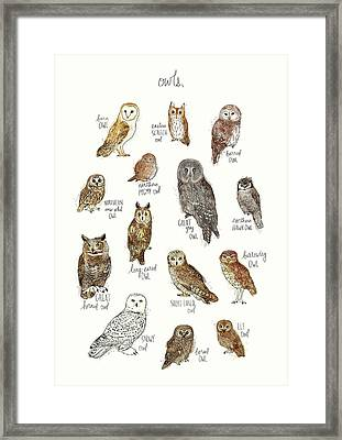 Owls Framed Print by Amy Hamilton