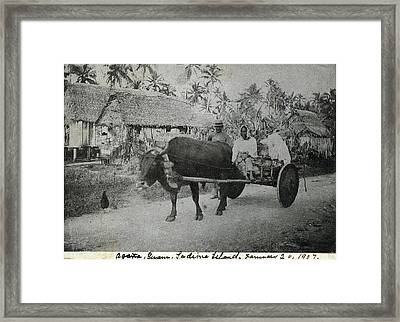 Framed Print featuring the photograph Ox Cart Guam 1907 by eGuam Photo