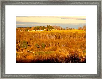 Oxford Glow2 Framed Print by Marcia Crispino
