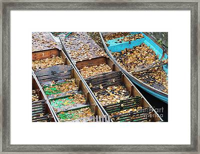 Oxford Punts Framed Print by Tim Gainey