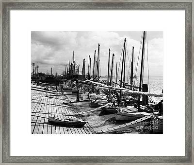 Oyster Luggers, New Orleans Ca 1910 Framed Print