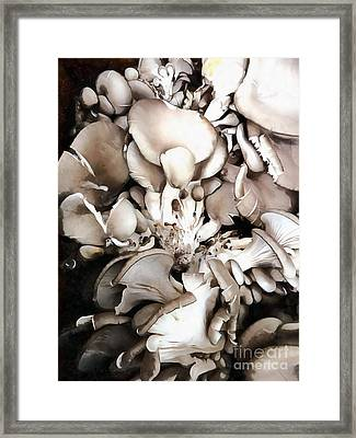 Oyster Mushrooms - Fruit Of The Forest Framed Print
