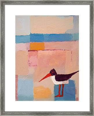 Oystercatcher On The Beach Framed Print