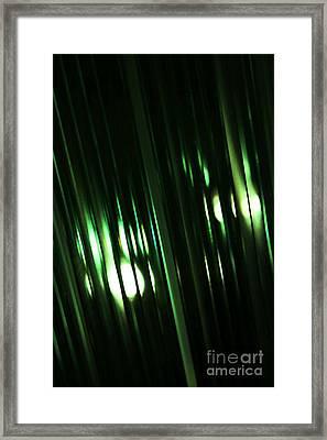 Oz Framed Print by Linda Shafer