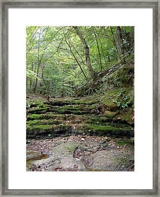 Ozark Creek Framed Print