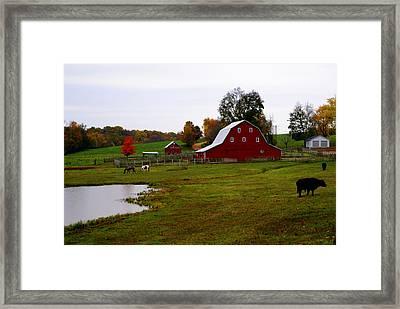 Ozark Farm Framed Print by Marty Koch