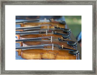 Framed Print featuring the photograph Ozark Hoedown by Wanda Brandon