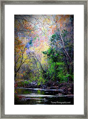 Ozarks Fall Framed Print
