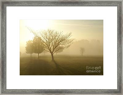 Ozarks Misty Golden Morning Sunrise Framed Print