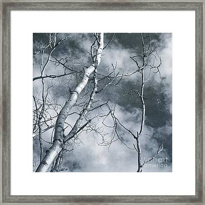 Land Shapes 36 Framed Print