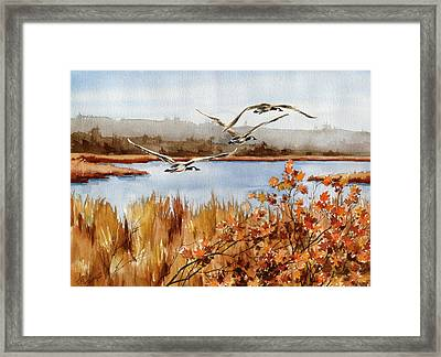 On The Fly Framed Print by Art Scholz
