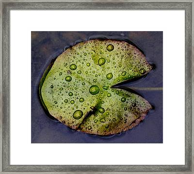 Pac Man Framed Print by Rebecca Cozart